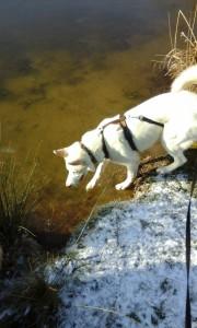 Aïsha stapt voorzichtig het ijs op