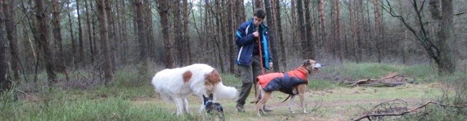 Maaike Kuyk, Gedragstherapeut voor honden
